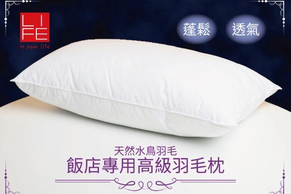 飯店高級羽毛枕 48x75cm